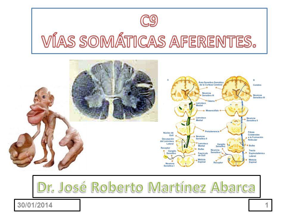 VÍAS SOMÁTICAS AFERENTES. Dr. José Roberto Martínez Abarca