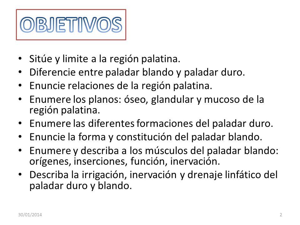 OBJETIVOS Sitúe y limite a la región palatina.
