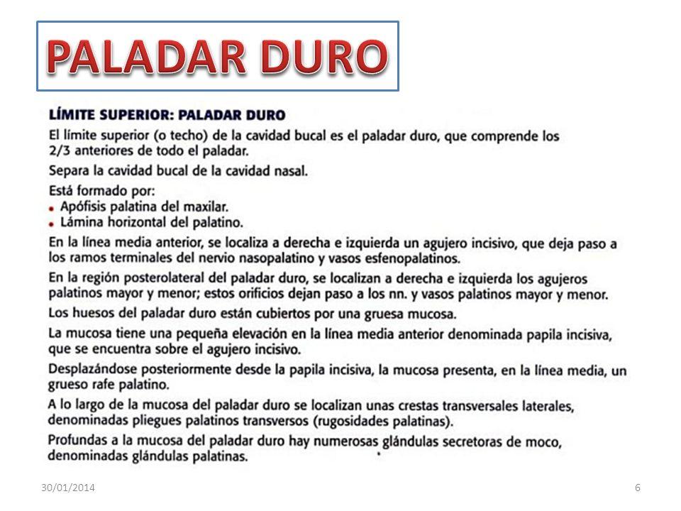 PALADAR DURO 24/03/2017