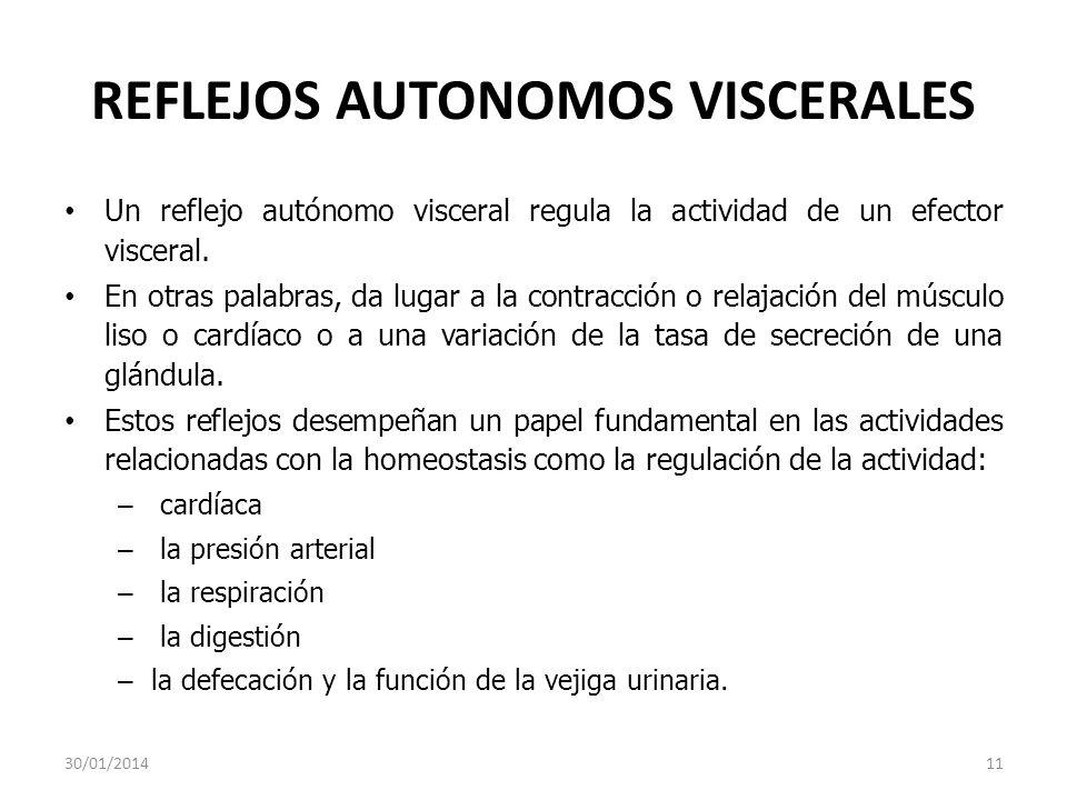 REFLEJOS AUTONOMOS VISCERALES