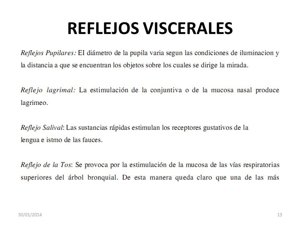 REFLEJOS VISCERALES 24/03/2017