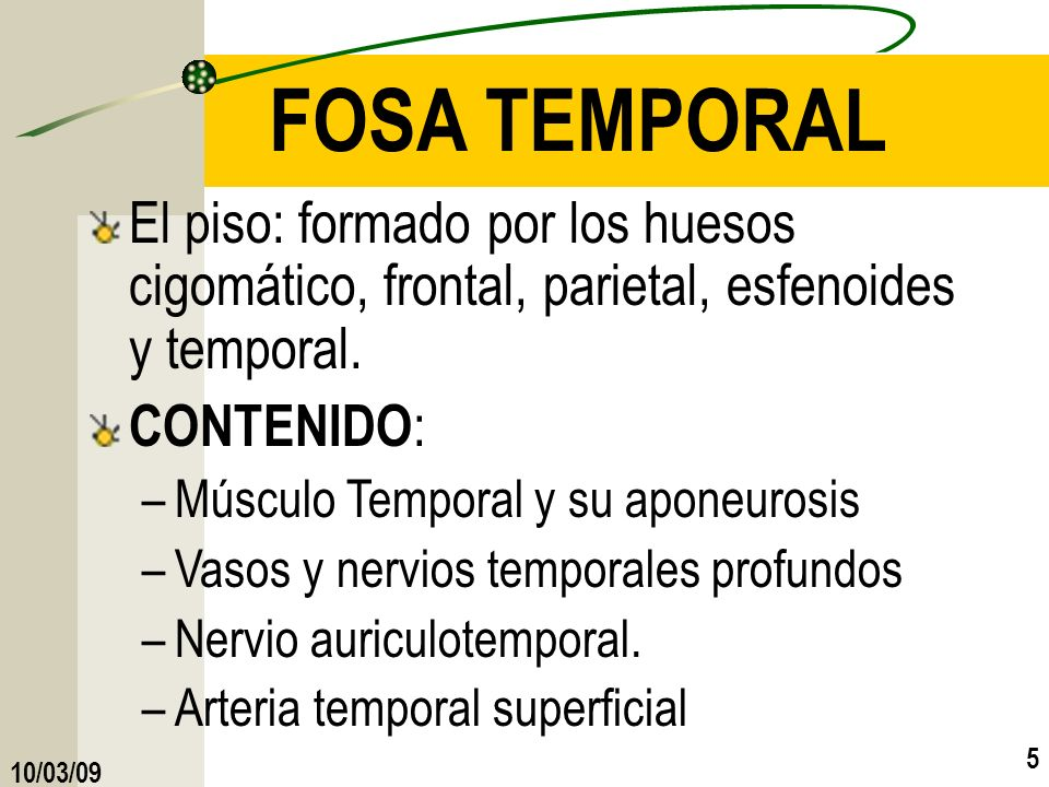 FOSA TEMPORALEl piso: formado por los huesos cigomático, frontal, parietal, esfenoides y temporal.