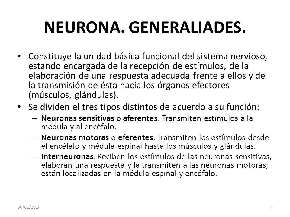 NEURONA. GENERALIADES.
