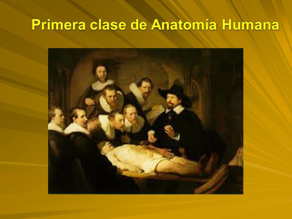 Primera clase de Anatomía Humana