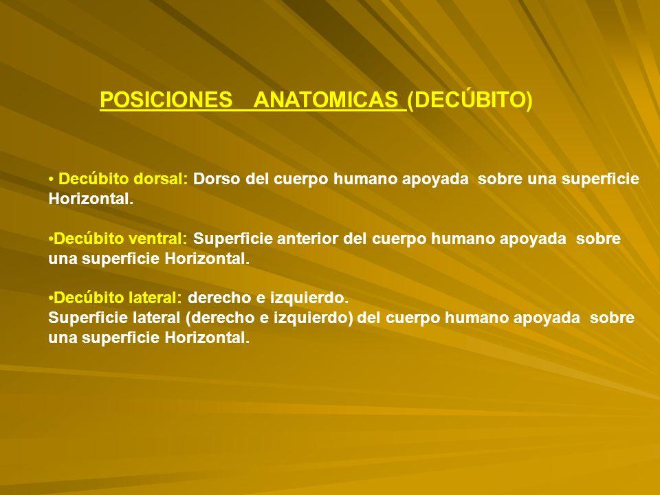 POSICIONES ANATOMICAS (DECÚBITO)