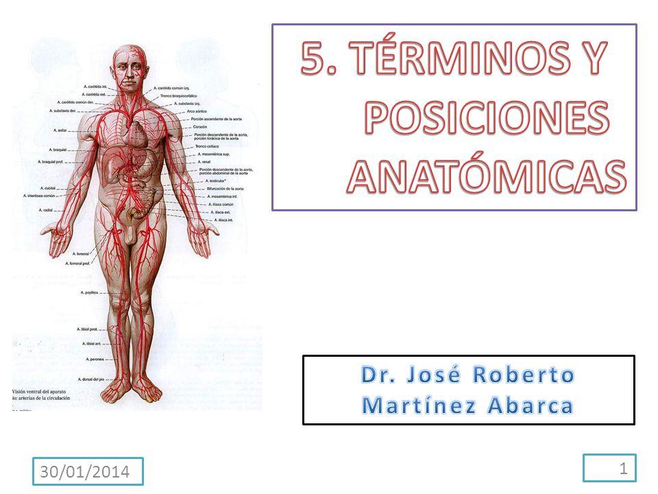 5. TÉRMINOS Y POSICIONES ANATÓMICAS Dr. José Roberto Martínez Abarca