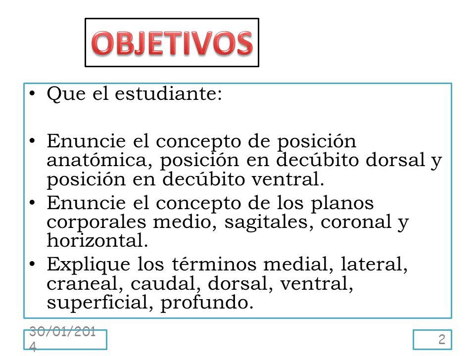 Perfecto Definición De Decúbito Supino En La Anatomía Ornamento ...