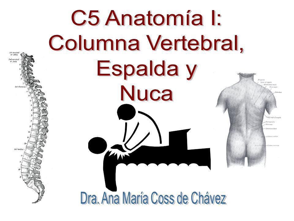 Dra. Ana María Coss de Chávez