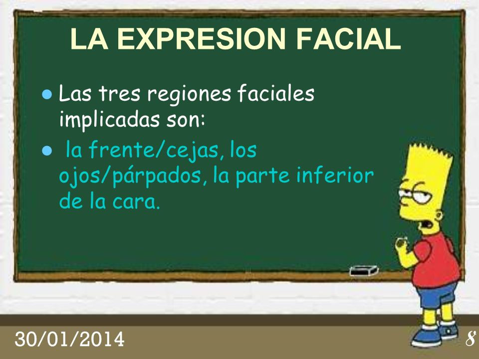 LA EXPRESION FACIAL Las tres regiones faciales implicadas son: