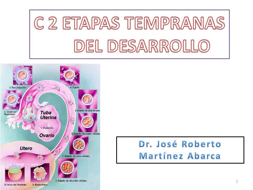 C 2 ETAPAS TEMPRANAS DEL DESARROLLO Dr. José Roberto Martínez Abarca