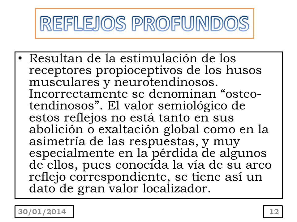 REFLEJOS PROFUNDOS