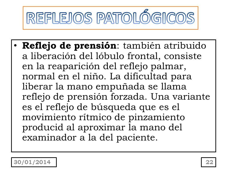 REFLEJOS PATOLÓGICOS