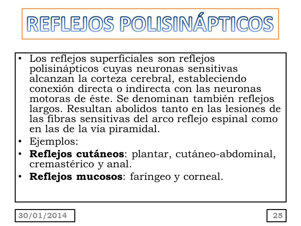 REFLEJOS POLISINÁPTICOS