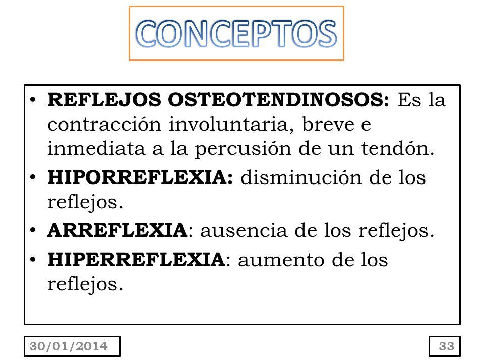 CONCEPTOS REFLEJOS OSTEOTENDINOSOS: Es la contracción involuntaria, breve e inmediata a la percusión de un tendón.