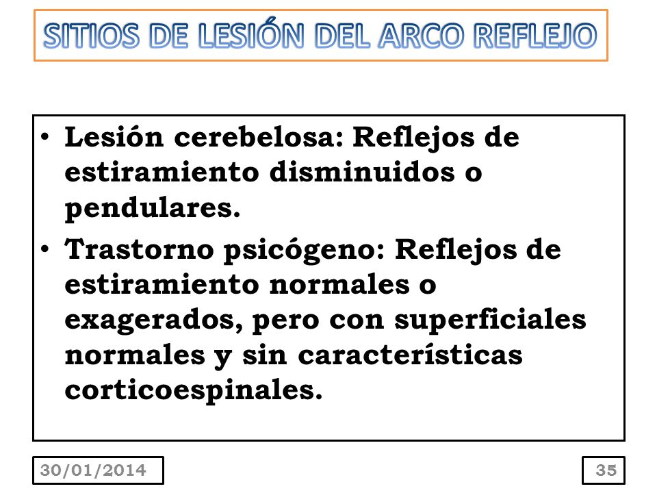 SITIOS DE LESIÓN DEL ARCO REFLEJO
