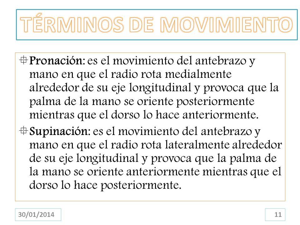 TÉRMINOS DE MOVIMIENTO