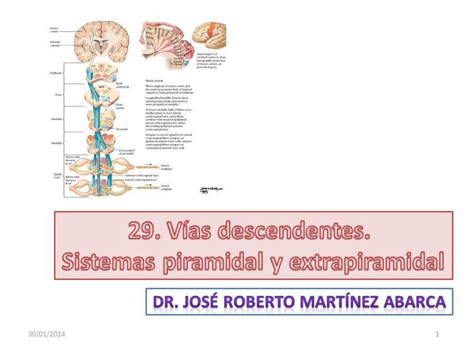 Sistemas piramidal y extrapiramidal Dr. José roberto martínez abarca