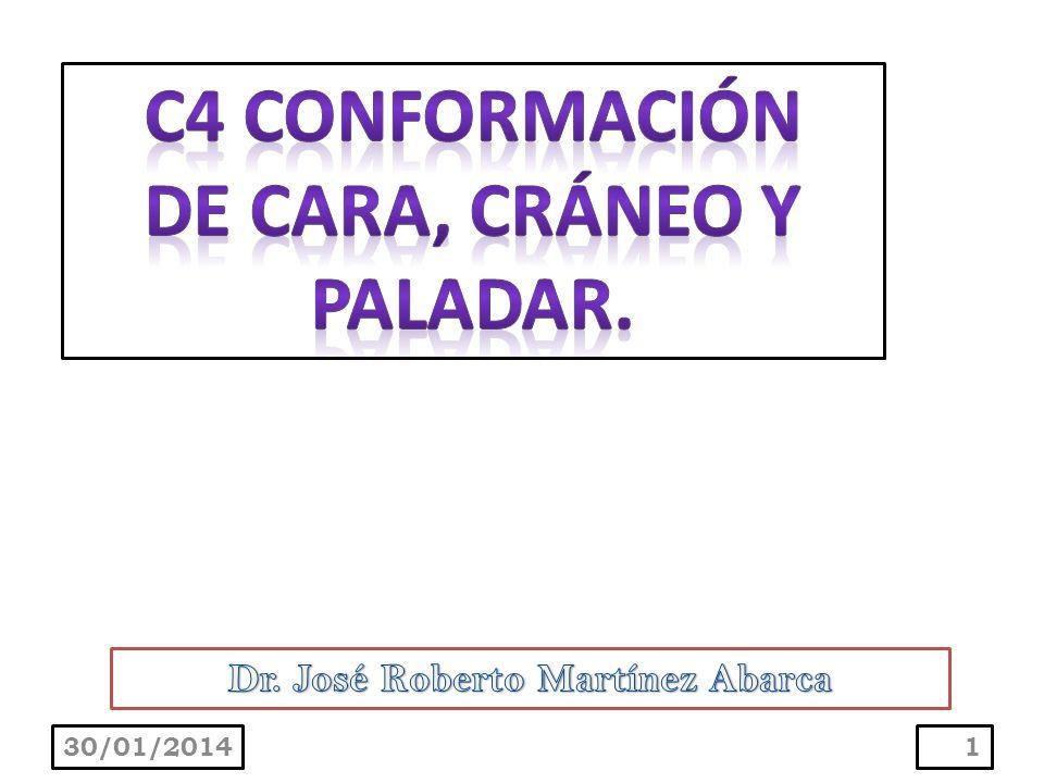 DE CARA, CRÁNEO Y PALADAR. Dr. José Roberto Martínez Abarca