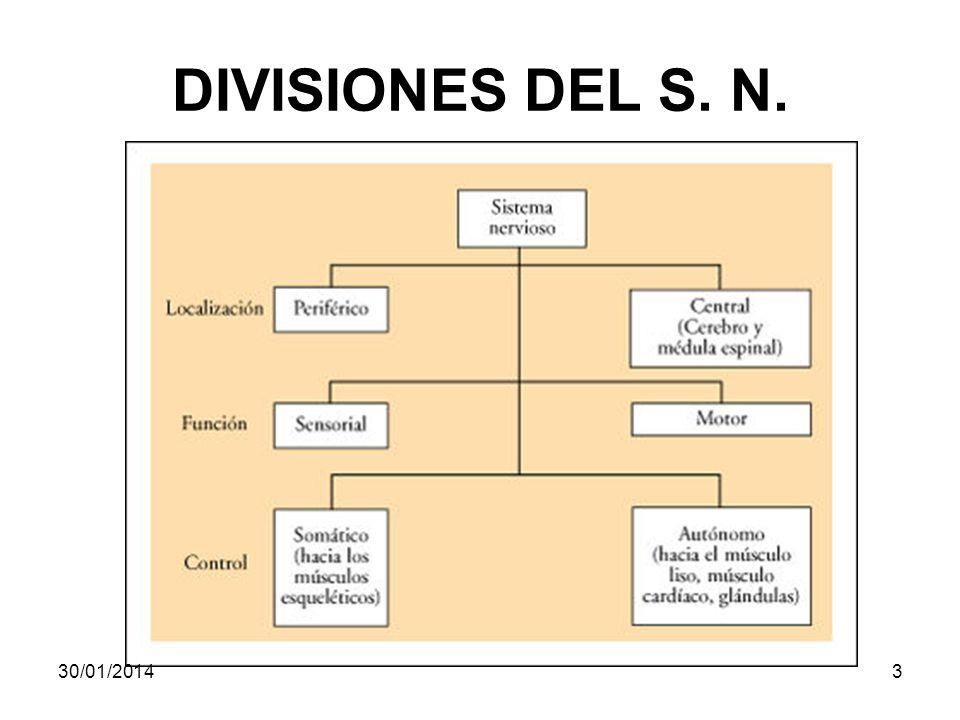 DIVISIONES DEL S. N. 24/03/2017