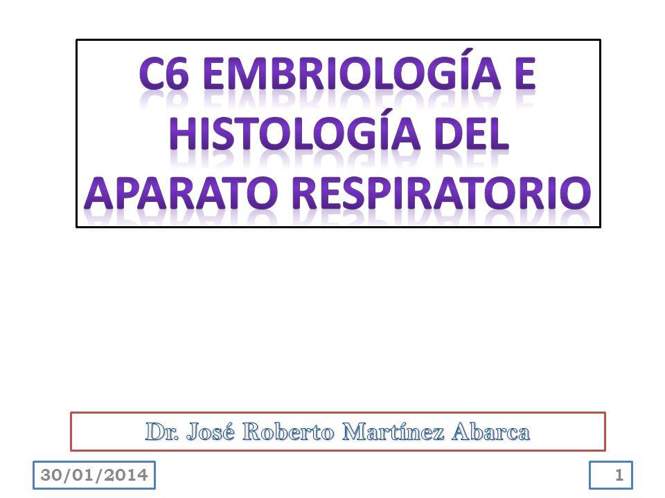C6 EMBRIOLOGÍA E HISTOLOGÍA DEL APARATO RESPIRATORIO