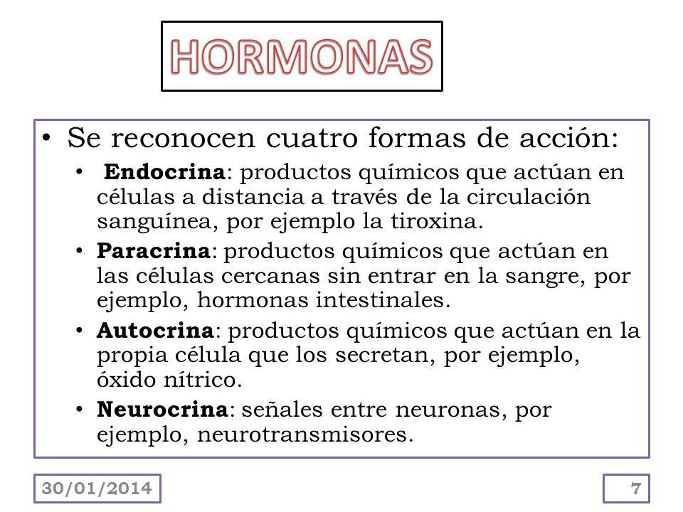 HORMONAS Se reconocen cuatro formas de acción: