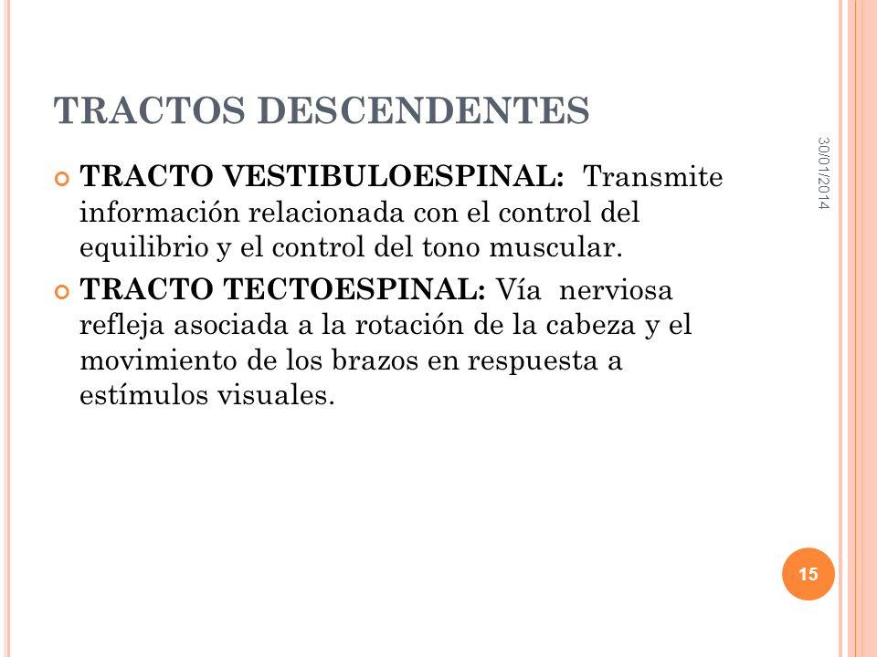 TRACTOS DESCENDENTES 24/03/2017.