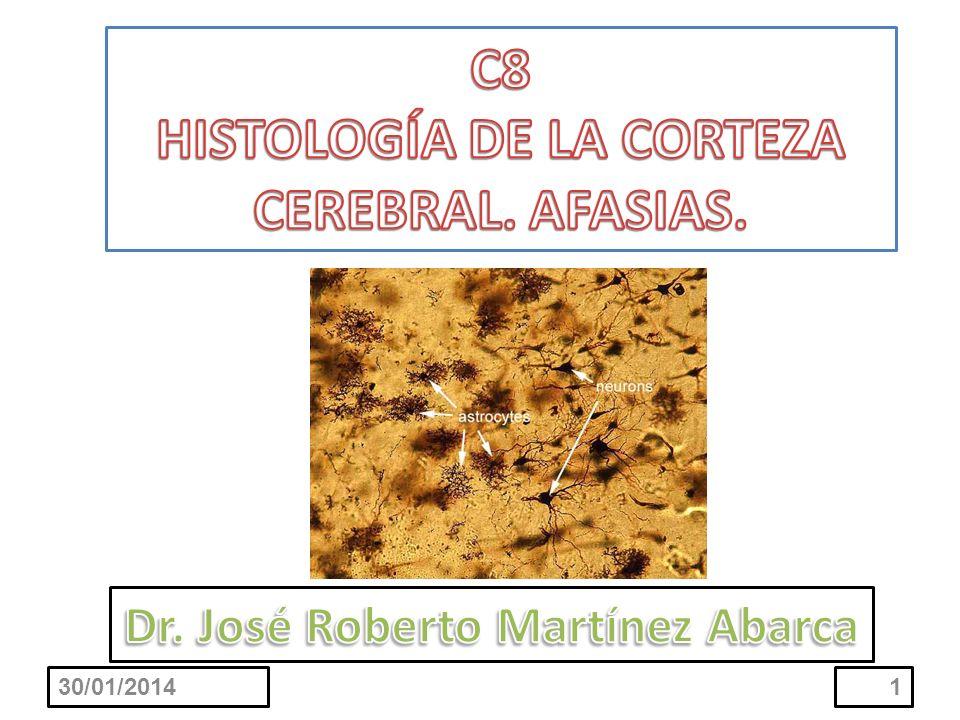 C8 HISTOLOGÍA DE LA CORTEZA CEREBRAL. AFASIAS.