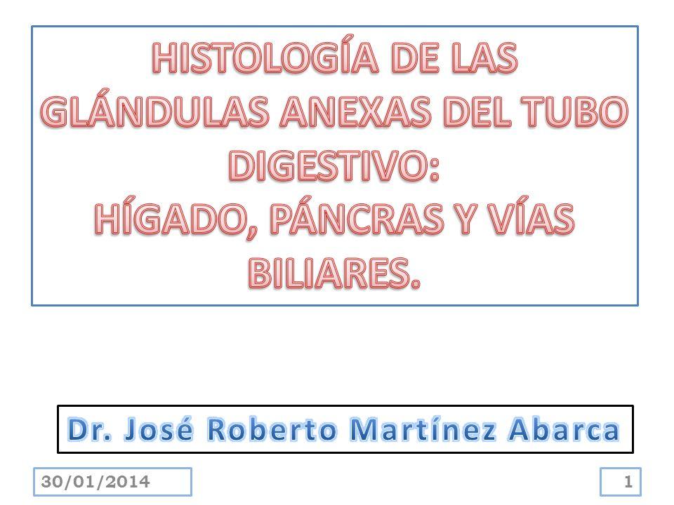 HISTOLOGÍA DE LAS GLÁNDULAS ANEXAS DEL TUBO DIGESTIVO: