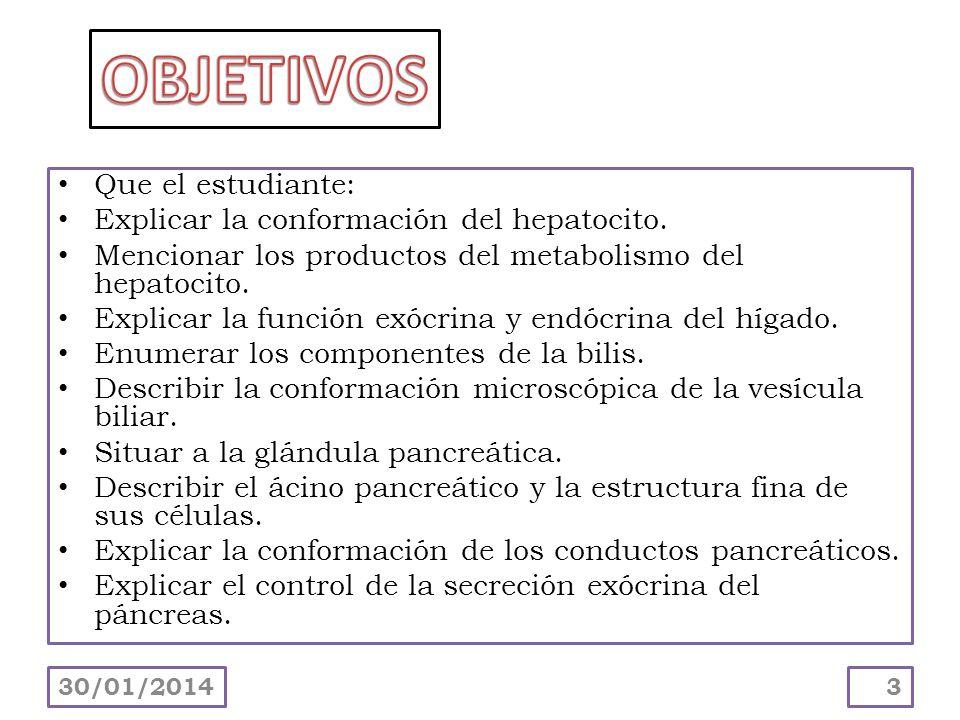 OBJETIVOS Que el estudiante: Explicar la conformación del hepatocito.