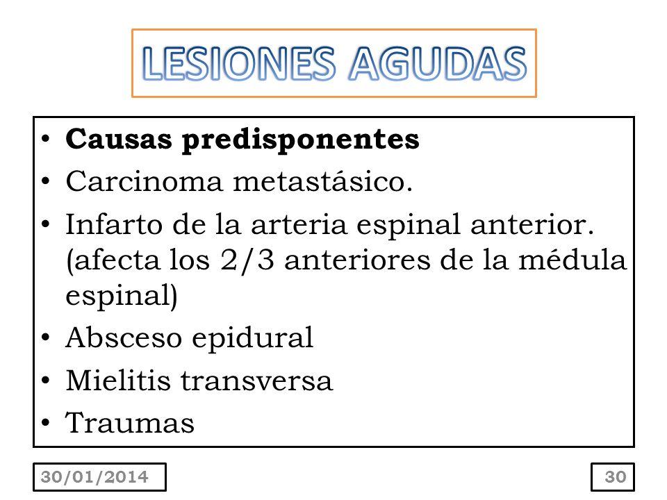 LESIONES AGUDAS Causas predisponentes Carcinoma metastásico.