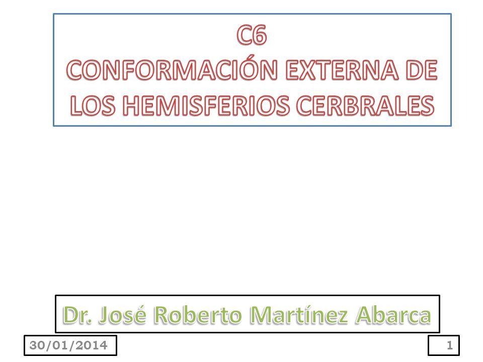 C6 CONFORMACIÓN EXTERNA DE LOS HEMISFERIOS CERBRALES