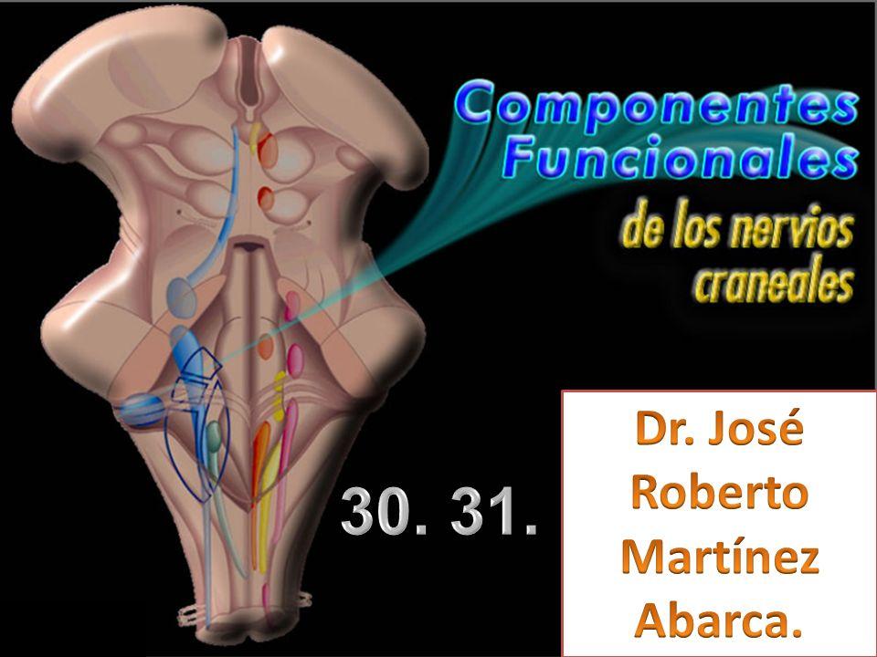 Dr. José Roberto Martínez Abarca. 30. 31. 24/03/2017
