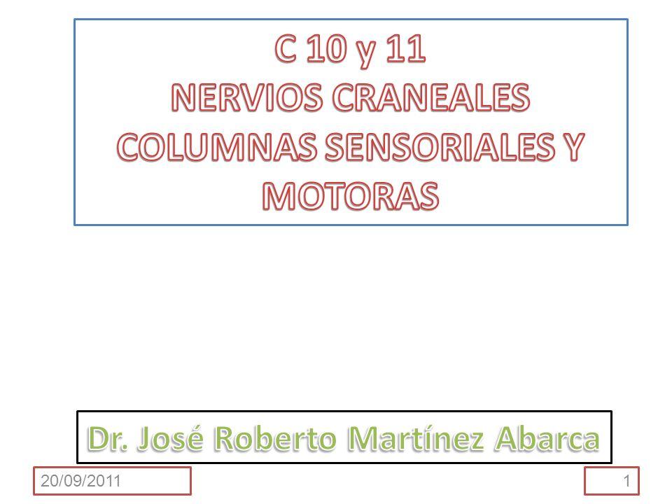 C 10 y 11 NERVIOS CRANEALES COLUMNAS SENSORIALES Y MOTORAS