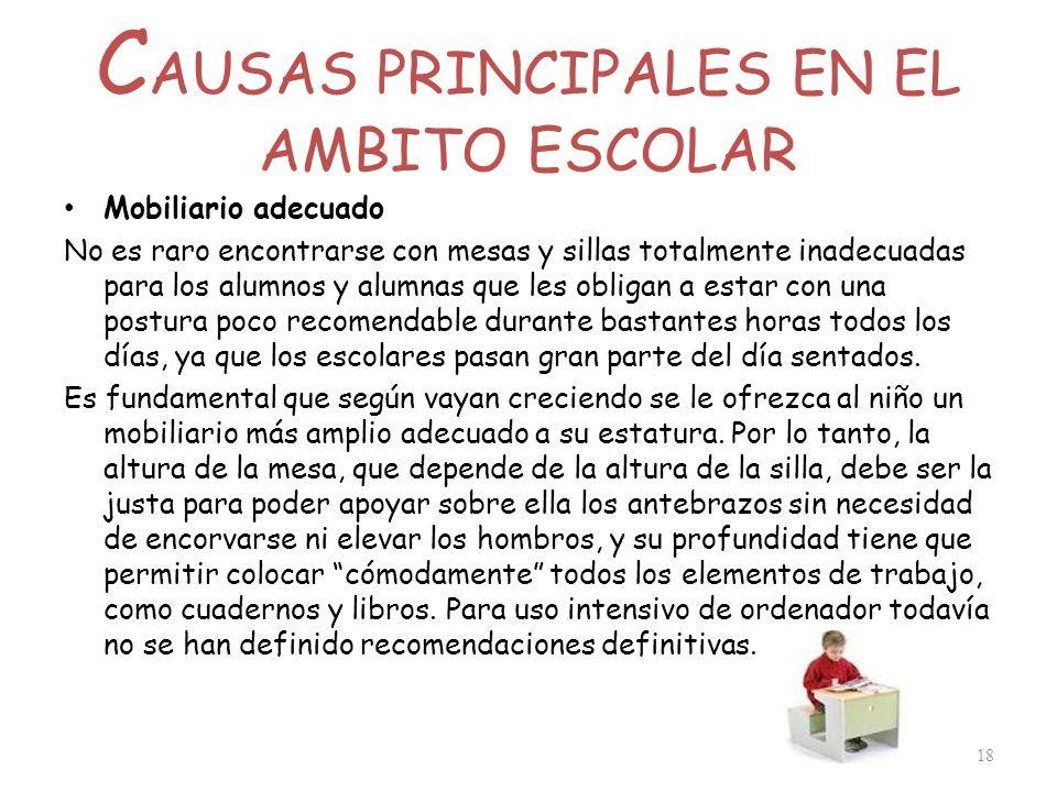 CAUSAS PRINCIPALES EN EL AMBITO ESCOLAR