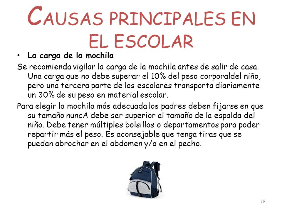 CAUSAS PRINCIPALES EN EL ESCOLAR