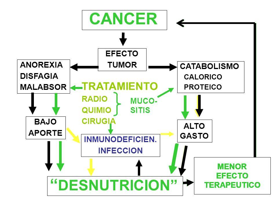 CANCER DESNUTRICION EFECTO TUMOR ANOREXIA CATABOLISMO DISFAGIA