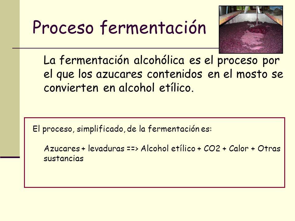Proceso fermentaciónLa fermentación alcohólica es el proceso por el que los azucares contenidos en el mosto se convierten en alcohol etílico.