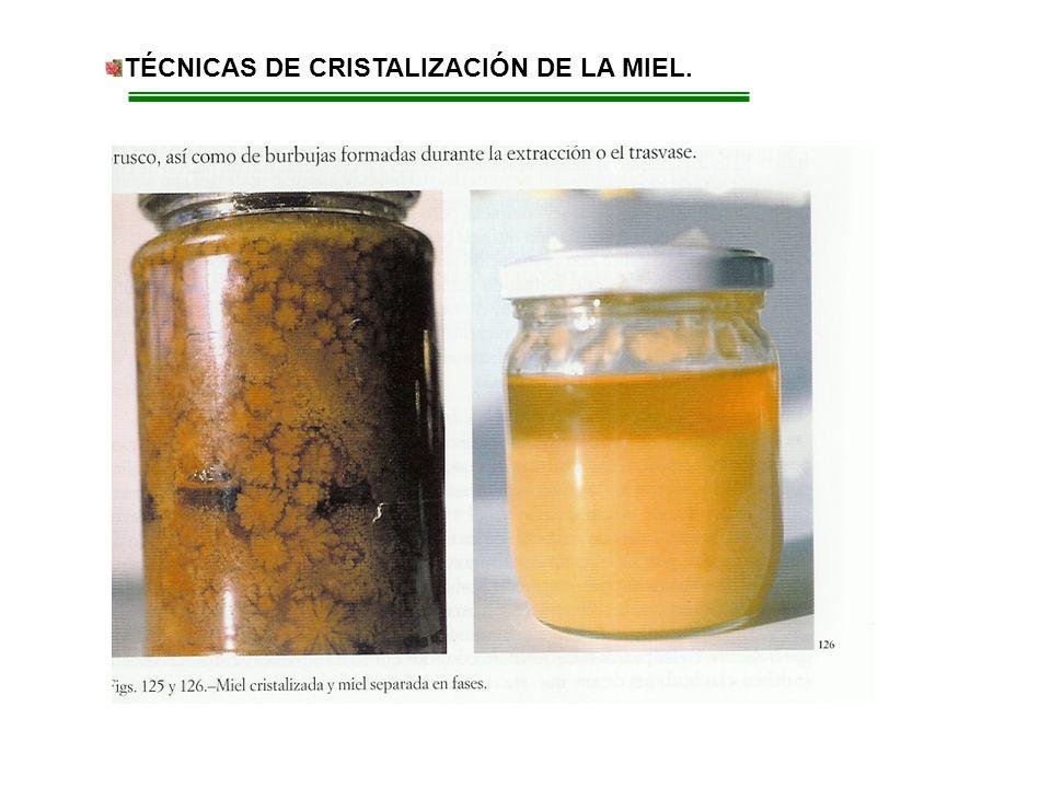 TÉCNICAS DE CRISTALIZACIÓN DE LA MIEL.