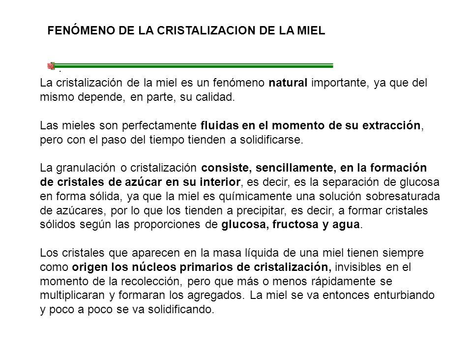 FENÓMENO DE LA CRISTALIZACION DE LA MIEL