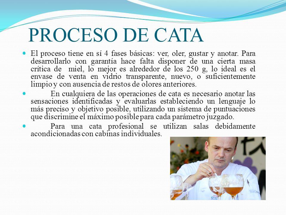 PROCESO DE CATA