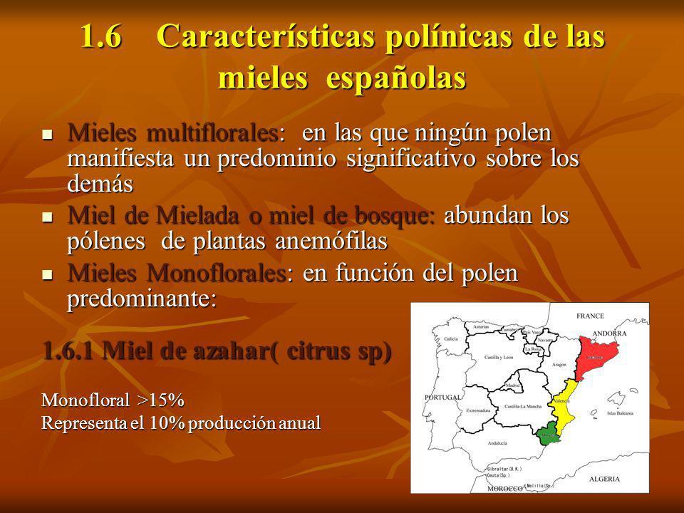 1.6 Características polínicas de las mieles españolas