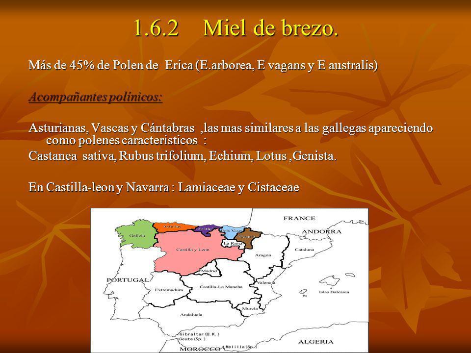 1.6.2 Miel de brezo. Más de 45% de Polen de Erica (E.arborea, E vagans y E australis) Acompañantes polínicos: