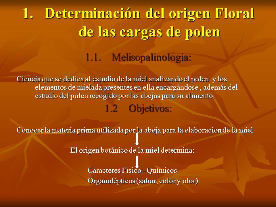 Determinación del origen Floral de las cargas de polen