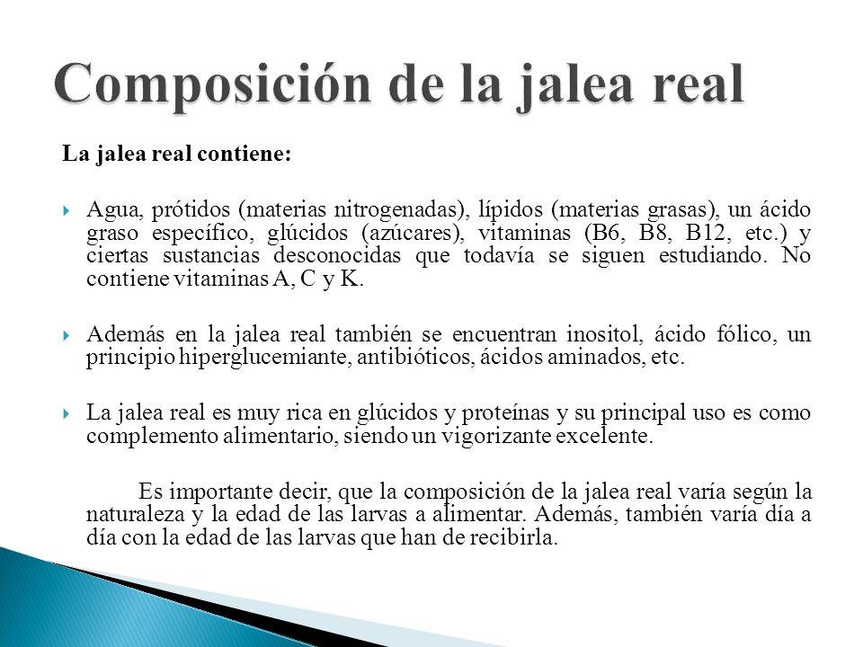 Composición de la jalea real