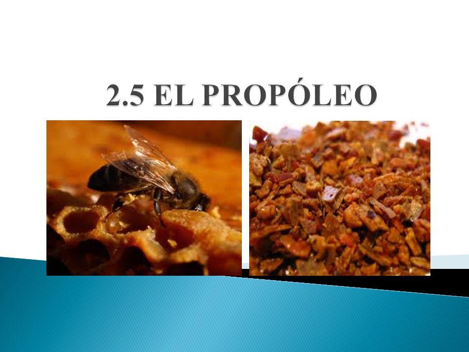 2.5 EL PROPÓLEO