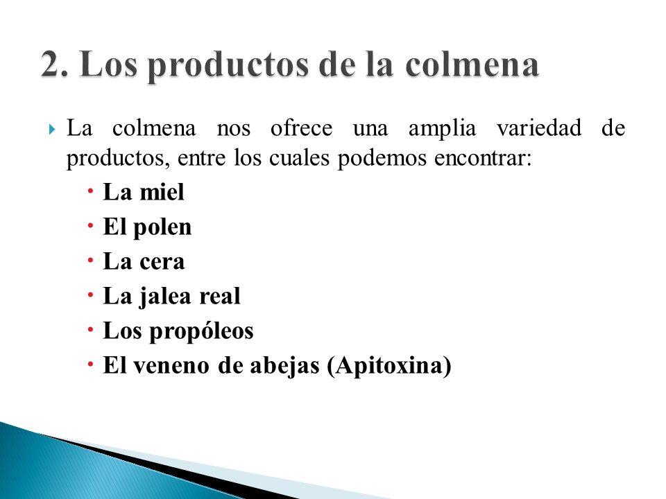2. Los productos de la colmena