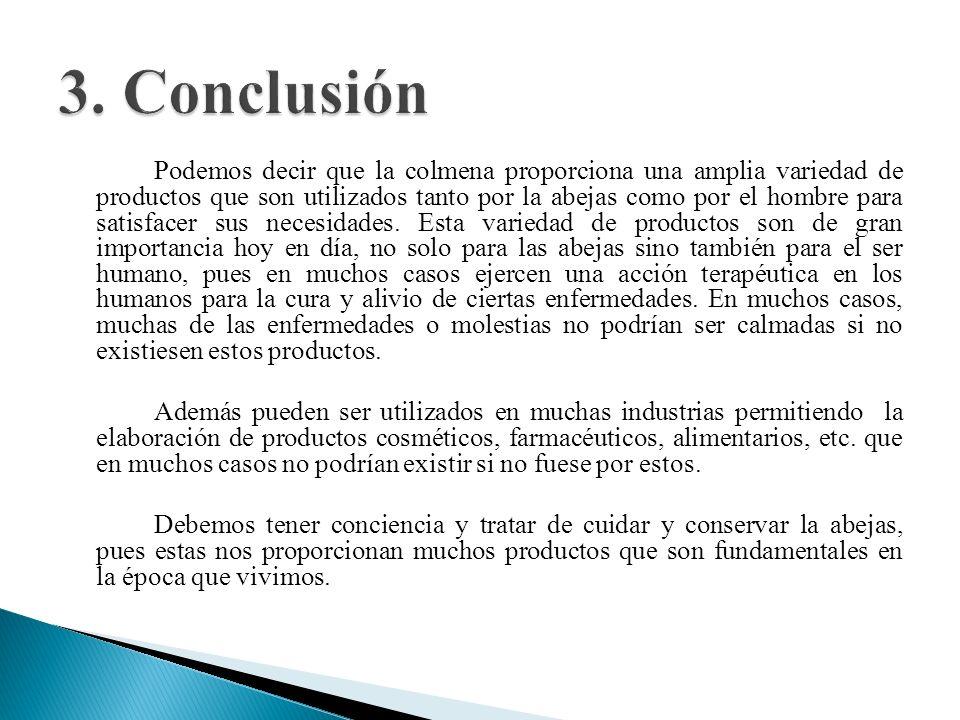 3. Conclusión