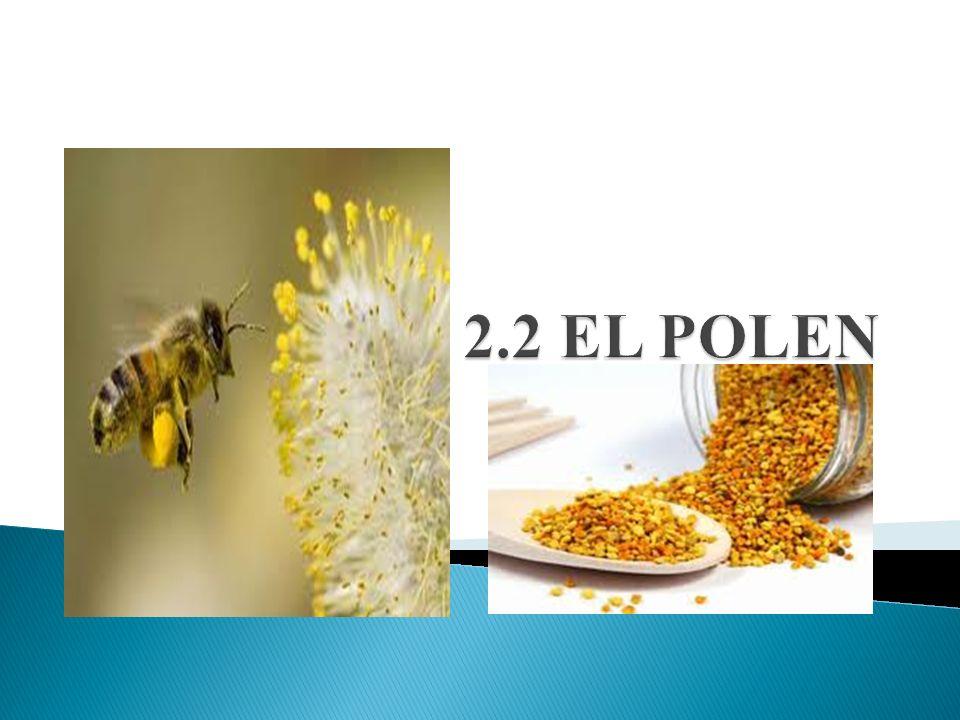 2.2 EL POLEN