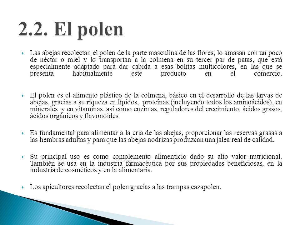 2.2. El polen
