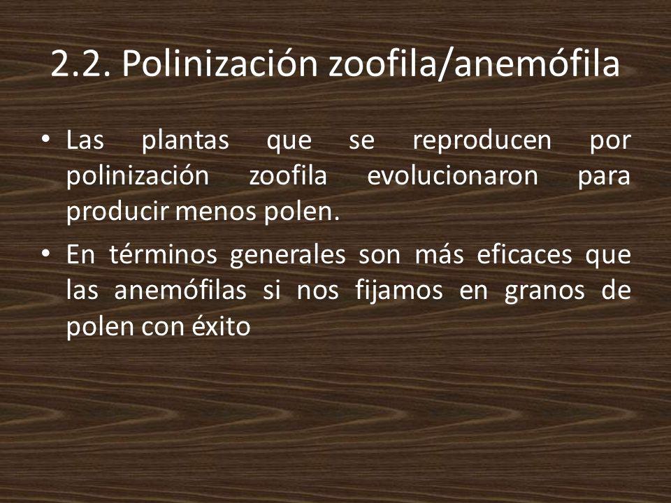 2.2. Polinización zoofila/anemófila